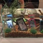 Gadgeturi rezistente la apa