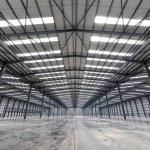 Halele industriale asigura conditii optime de procesare si depozitare in industria alimentara