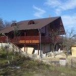 Avantajele unei case ecologice din lemn