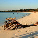 Fascinatia pentru oferte 2018 Zanzibar