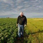 Cum pregatesti pamantul pentru culturile agricole din primavara?