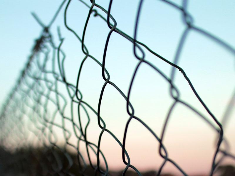 Gard-din-plasa